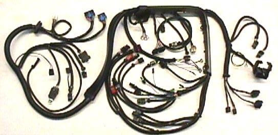 8687enginewireharness gbodyparts com online caspers wire harness at bayanpartner.co